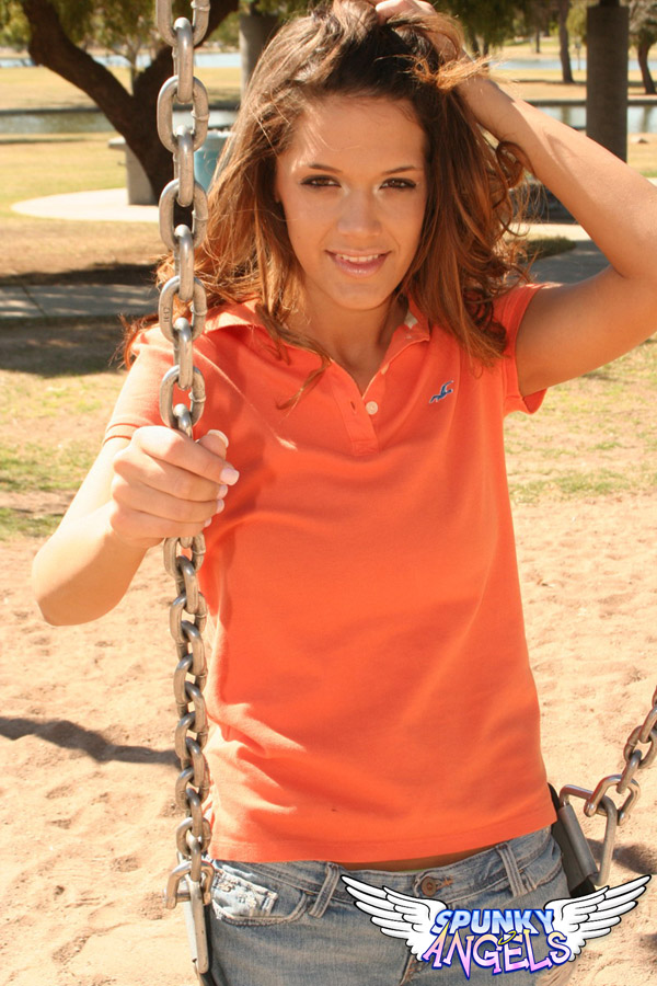 Brittanys Playing Around In A Playground - Picture 7