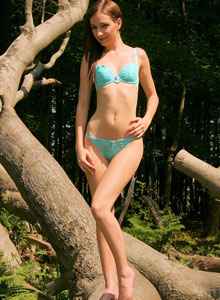 Skinny Teen Shows Off Her Perfect Perky Tits As She Strips Out In The Woods - Picture 1